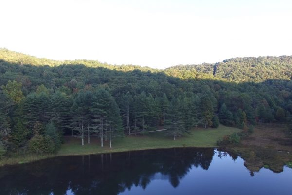 Blue Ridge property (20)